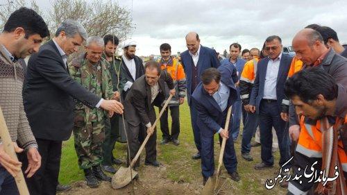 درختکاری در مسیر راههای ورودی شهر بندرترکمن آغازشد