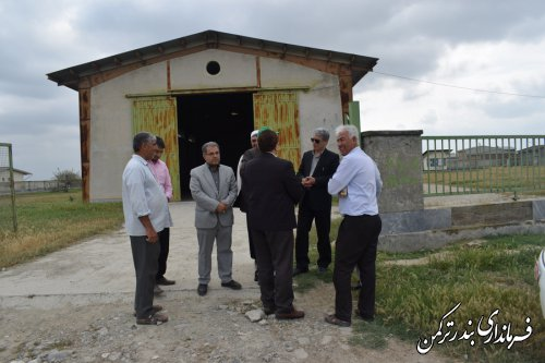 بازدید فرماندار ترکمن از مراکز خرید کلزا شهرستان ترکمن
