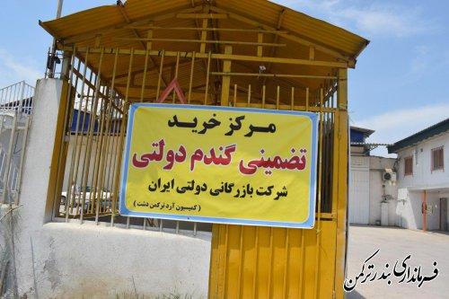 بازدید فرماندار از مراکز خرید تضمینی گندم و کلزا در شهرستان ترکمن