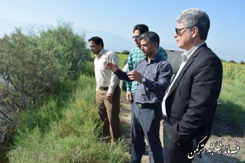 بازدید فرماندار ترکمن از مسیر متروکه رودخانه قره سو در نیازآباد