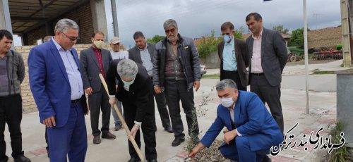 کاشت نهال های زیتون در امتداد خیابان امیرکبیر بندرترکمن با حضور فرماندار