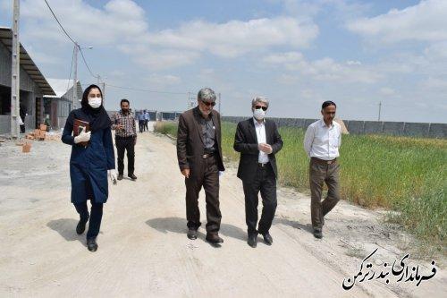 بازدید فرماندار شهرستان بندرترکمن از پروژه های در دست اقدام جهاد کشاورزی شهرستان