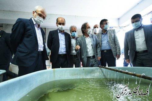 استاندار گلستان بر لزوم تقویت مراکز تحقیقاتی استان تاکید کرد