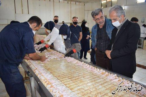 بازدید فرماندار شهرستان ترکمن از طرح کیانیان شمال