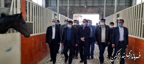 حضور معاون توسعه کارآفرینی و اشتغال وزارت تعاون، کار و رفاه اجتماعی در شهرستان ترکمن