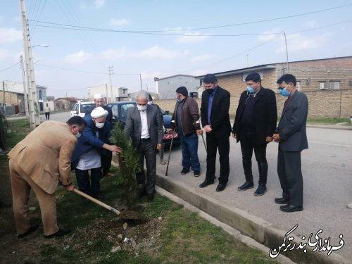کاشت نهال در شهر تازه تاسیس سیجوال با حضور فرماندار شهرستان ترکمن
