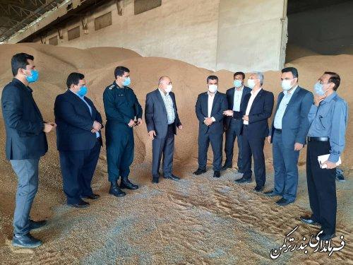 بازدید فرماندار شهرستان ترکمن از مراکز خرید تضمینی گندم شهرستان