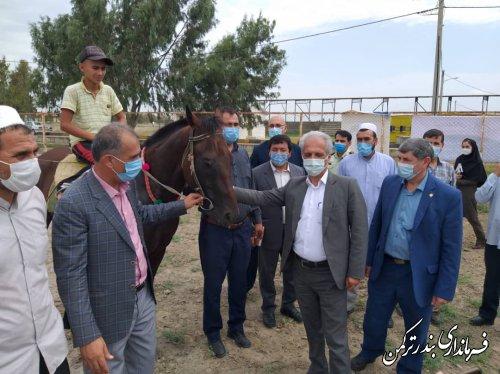 افتتاح اولین آموزشگاه پرورش اسب وسوارکاری شمال کشور در شهرستان ترکمن